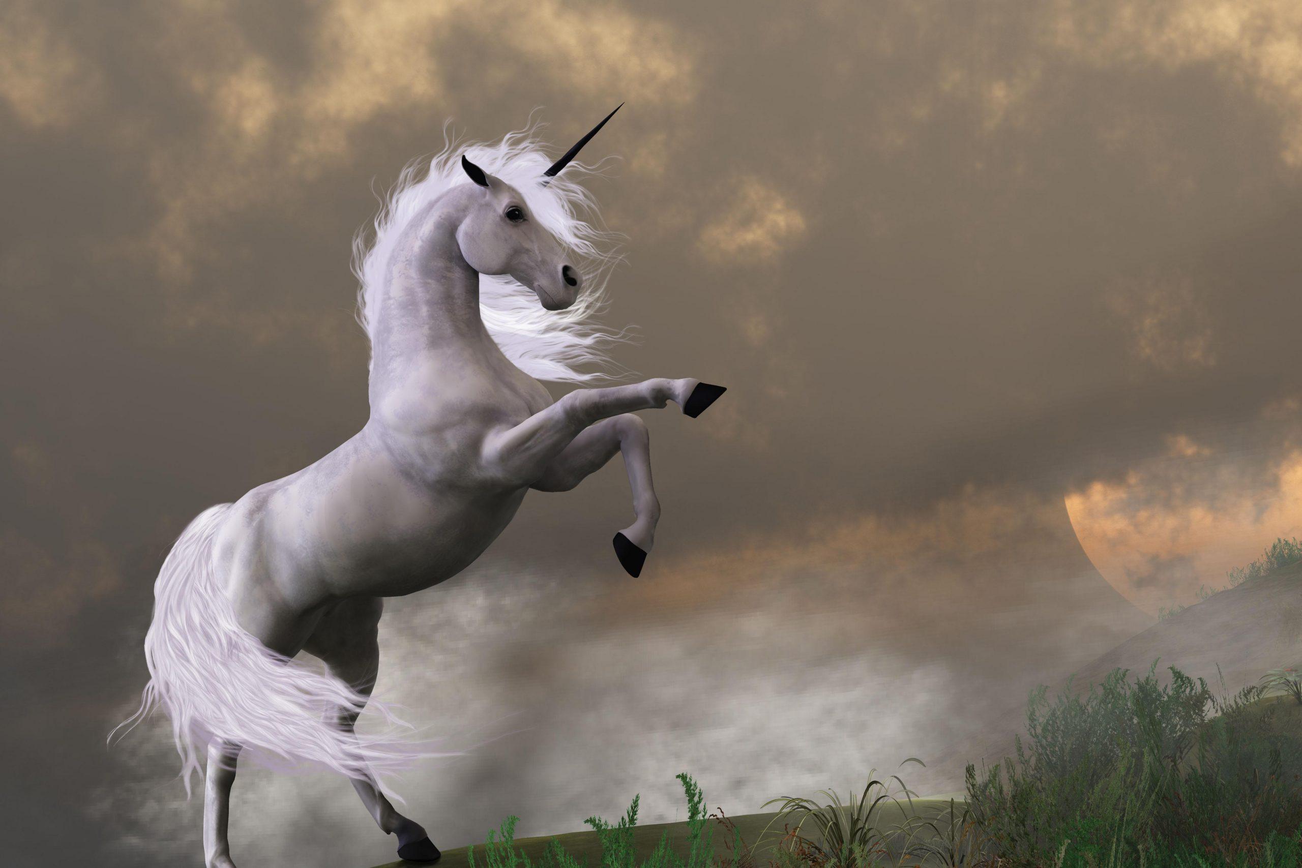 Finding the Mythical Unicorn